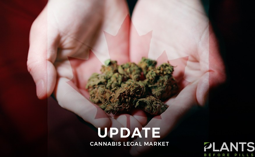 Cannabis Market in Canada - An Update