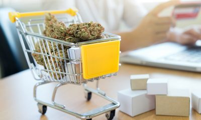 A Brief Guide to Buying CBD Online