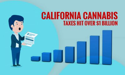 California Cannabis Taxes Hit Over $1 Billion