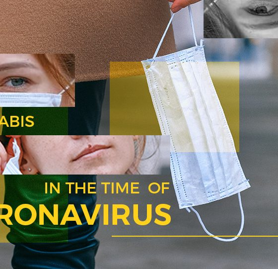 Cannabis in the Time of Coronavirus, Covid-19