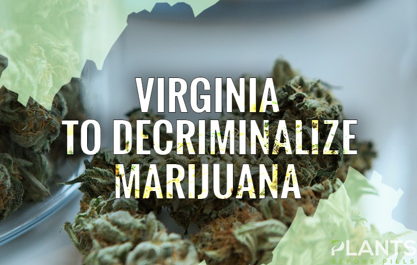 Virginia Moves to Decriminalize Marijuana