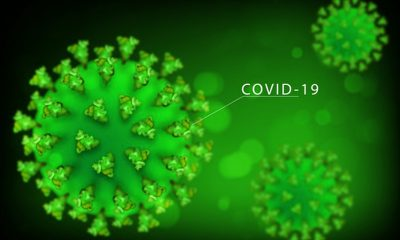 Here's How to Use CBD Safely Amid COVID-19 Pandemic
