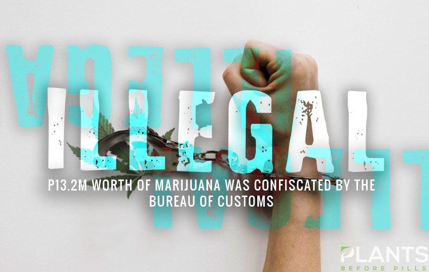 Cannabis, Marijuana, Nabbed in Clark, Pampanga