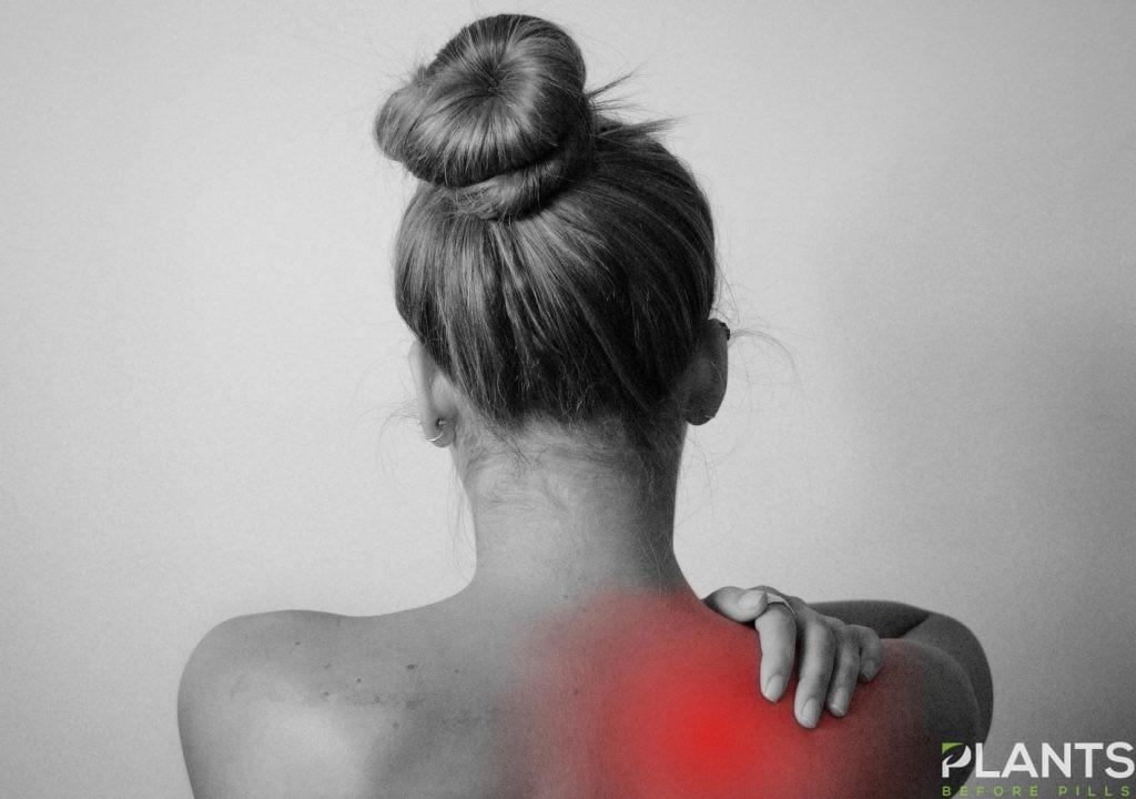 Back Pain and CBD