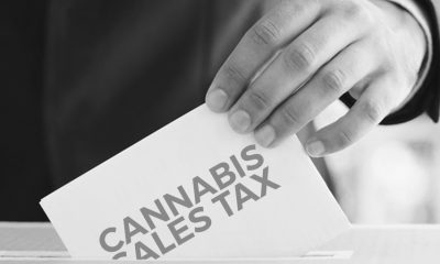 Milpitas Council Mulls Over Cannabis Sales Tax in Ballot