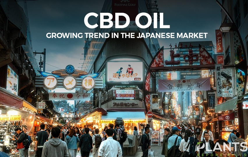 CBD Oil Japan