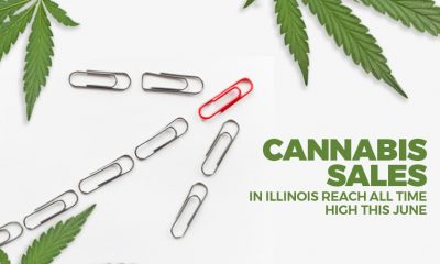 Cannabis Sales in IL