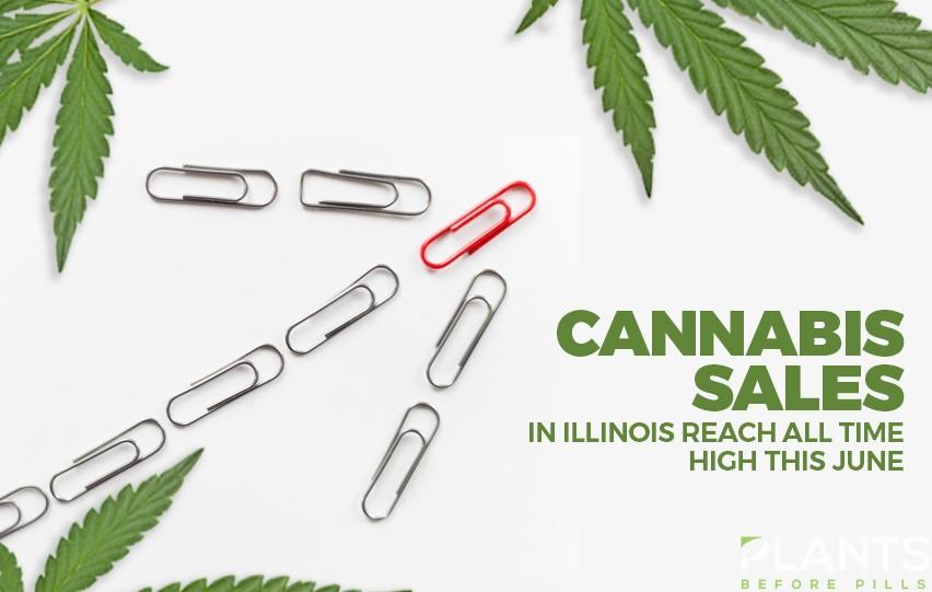 Cannabis Sales in IL