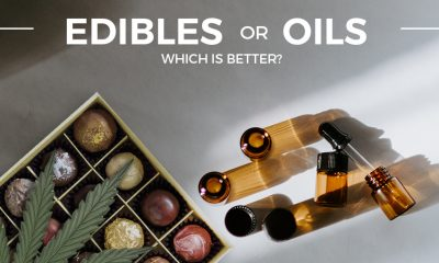Edibles and CBD Oils
