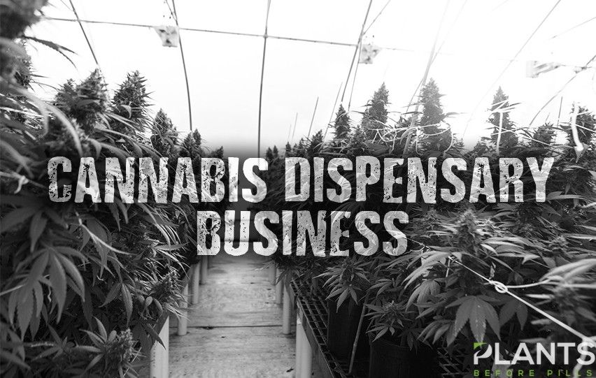 Cannabis Dispensary Business