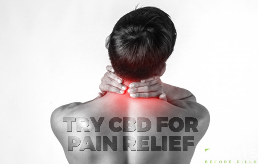 cbd for pain relief