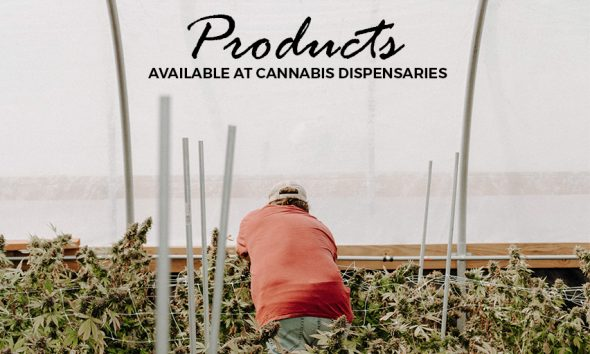 cannabis dispensaries