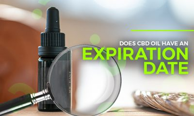CBD Oil Expiration