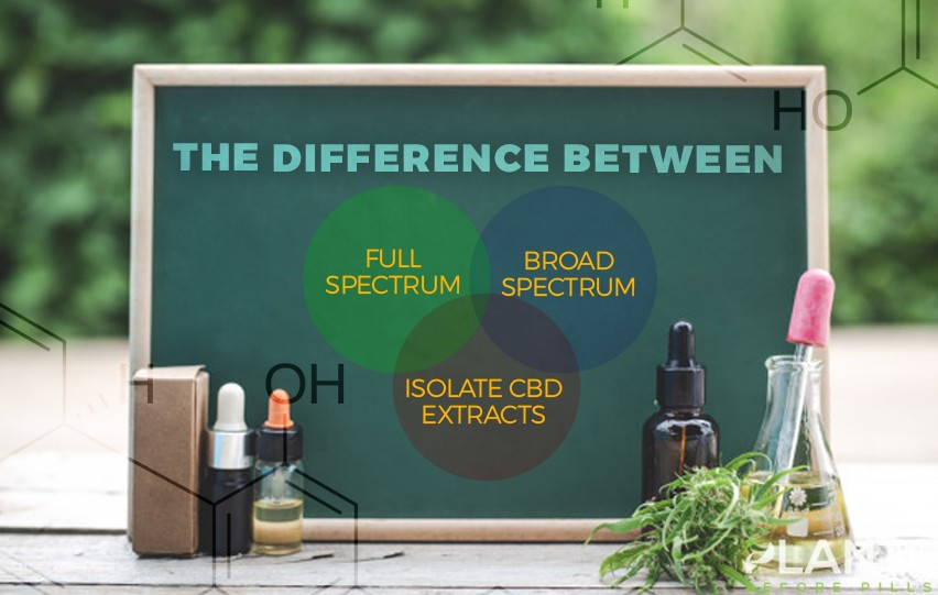 The Difference Between Full Spectrum