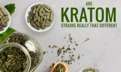 Are Kratom Strains Really that Different