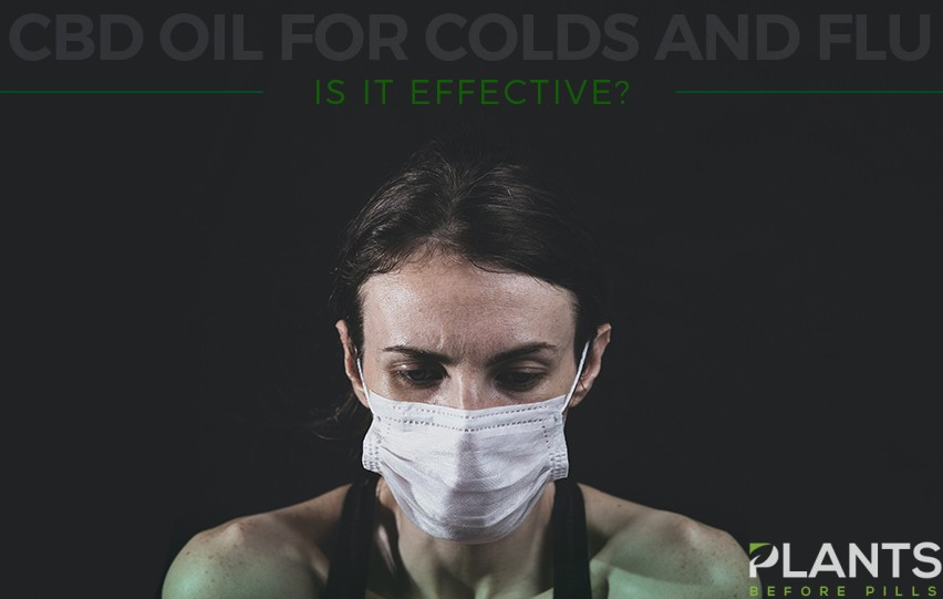 CBD Oil for Colds and Flu