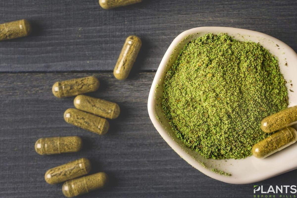 So, What Kratom Strain Has the Most Alkaloids?