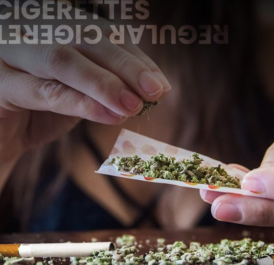 CBD Cigarettes vs Regular Cigarettes