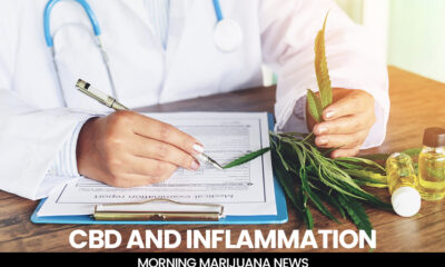 CBD and Inflammation