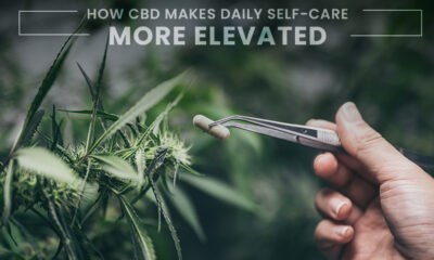 How CBD Makes Daily Self-Care Feel More Elevated