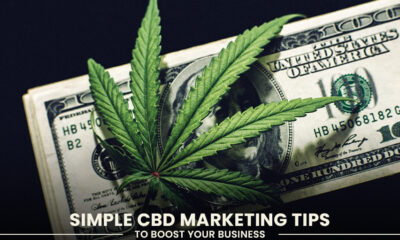 CBD Marketing Tips to Boost Your Business