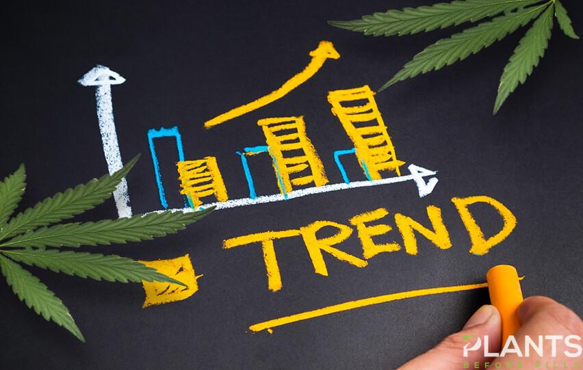 CBD Trends