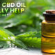 CBD oil really help with acne