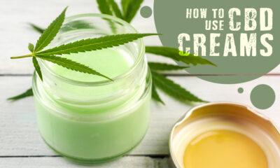 Use CBD Creams