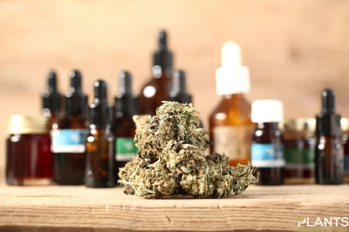 CBD-Infused Products in the Market