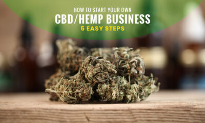 start your own Hemp business in 2021