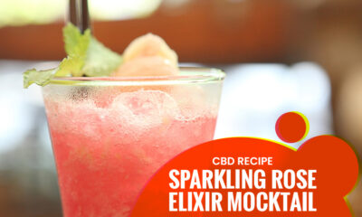 Rose Elixir Mocktail