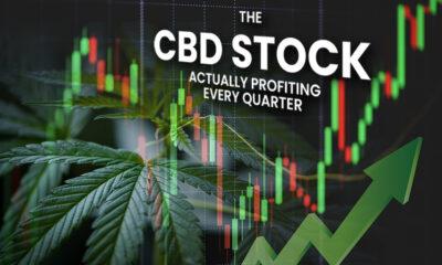 CBD Stock Actually Profiting Every Quarter