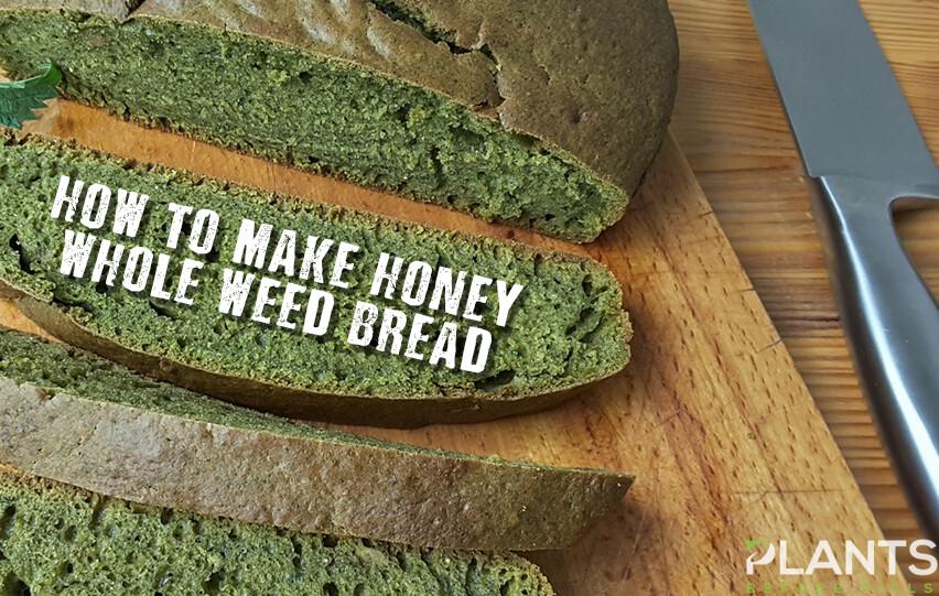 Honey Whole Weed Bread